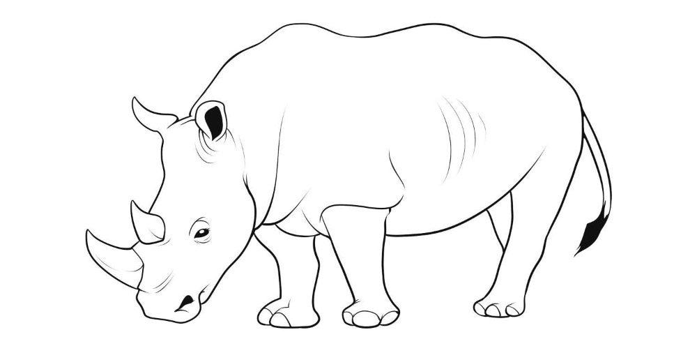 Dibujos de rinocerontes - Dibujos para pintar en tejas ...